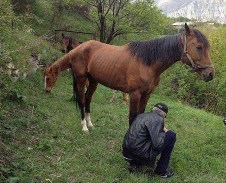 30 фотографий, которые волшебным образом обманут ваше зрение