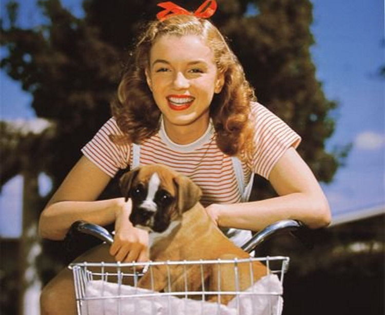 Тайная жизнь Мэрилин Монро в 30 интересных фактах
